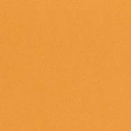 Kumquat C1 | P1 | L1 | E1