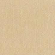Raw Silk Gold C2